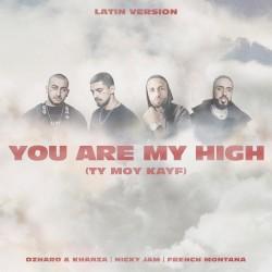 Джаро & Ханза & Kavabanga Depo Kolibri - You Are My High (Ty moy kayf) (latin version)